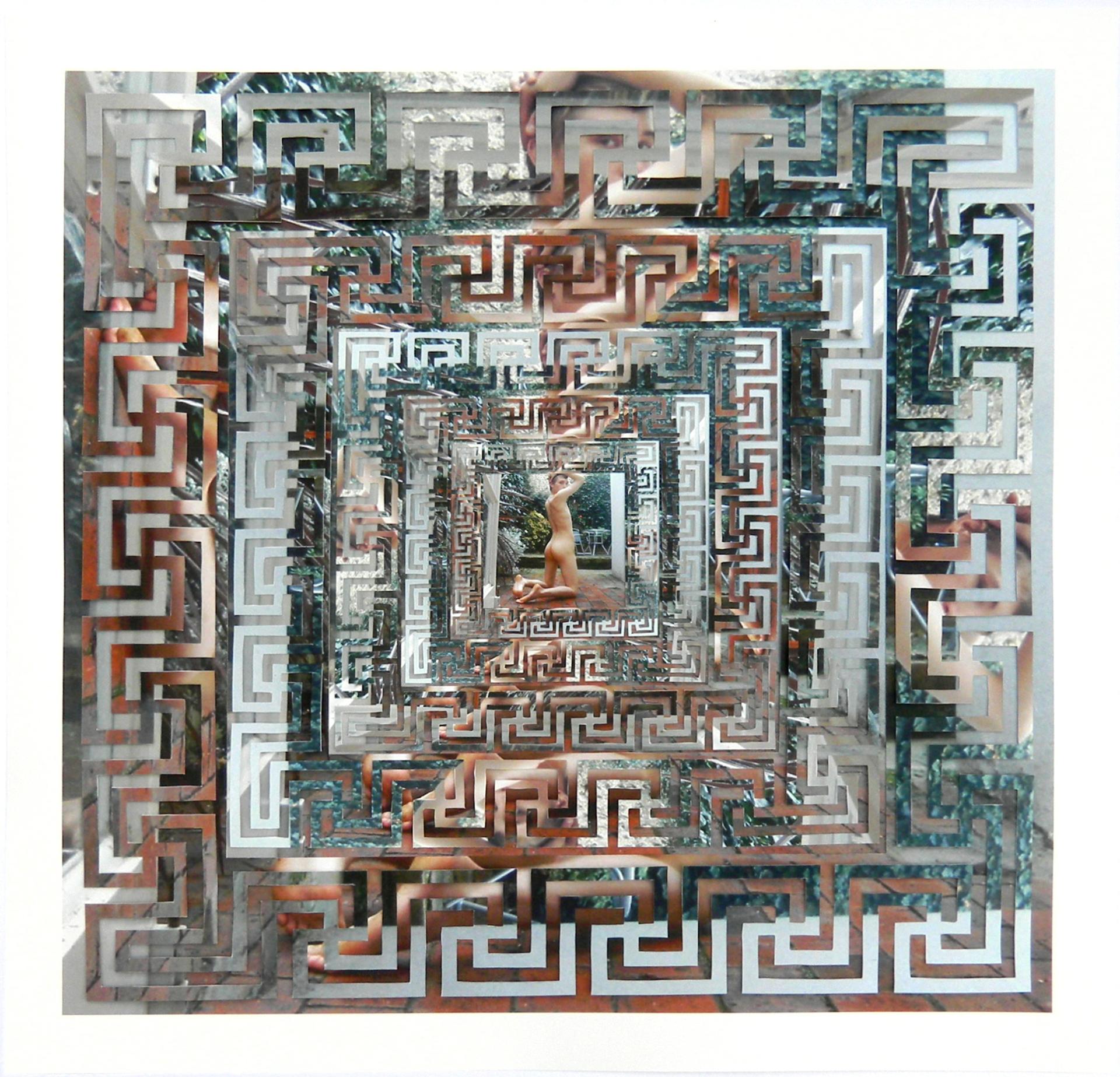 """Garden View Cut Archival Inkjet Prints 22"""" x 22"""" 2011"""